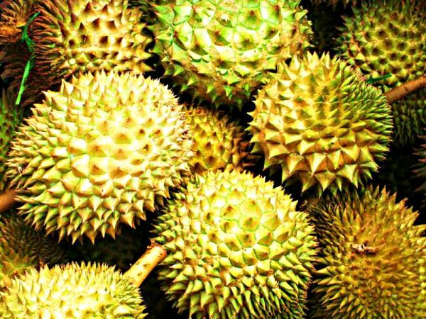 Так выглядит фото фрукта дуриана