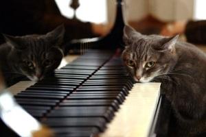 Музыка эпохи средневековья