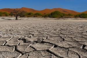 Песок в пустыне